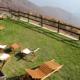 Alla scoperta di te: vacanza mindfulness di fine estate all'Alpe Belvedere